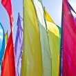 Flags — Stock Photo #1250054
