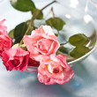 Roses for love — Stock Photo #1250061
