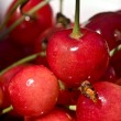Cherry — Stock Photo #1252056