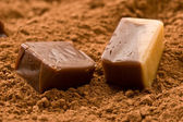 Cacao candy — Stock Photo