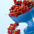 Currant — Stock Photo #1274277