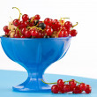 Currant — Stock Photo #1274296
