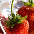 Strawberry — Stock Photo #1282019