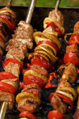 Shashlik (kebab) — Stock Photo