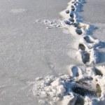 Frozen steps — Stock Photo