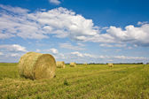 Agriculture series: field with ready hayrick — Stock Photo