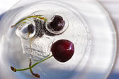 Frozen cherry — Stock Photo