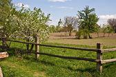 Village fence — Stock Photo