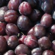 Plum — Stock Photo #1351314