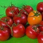 Tomato — Stock Photo #1351332