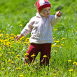 Child on the green meadow — 图库照片