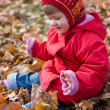 Stock Photo: Golden autumn