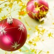 Christmas decoration — Stock Photo #1368422