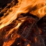 Campfire — Stock Photo #1377229