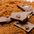 Cacao  and — Stock Photo