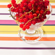 Red currant — Stock Photo #1441631