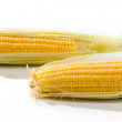 Corn — Stock Photo #1444657