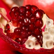 Pomegranate — Stock Photo #1447045