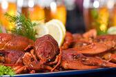Crawfish — Foto de Stock