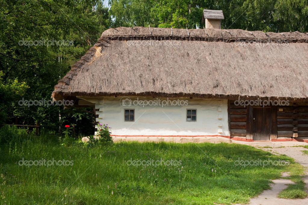Old traditional ukrainian house with thatched roof — Foto Stock #1445793