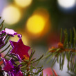 Christmas mood — Foto Stock