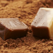 Macro view: chocolate candy over cocoa background — Stockfoto #1459078