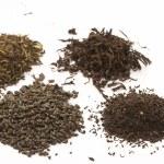 Tea leafs — Stock Photo #1459933