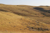Steppe's hill — Stock Photo