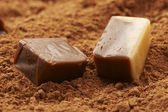 Macro view: chocolate candy over cocoa background — Stockfoto