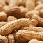 Peanut — Stock Photo #1464846