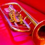 Trumpet — Stock Photo #1467568