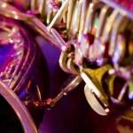 Trumpet — Stock Photo #1467602