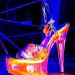 Strip-tease shoes — Stock Photo