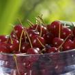 Cherry for dessert - Stok fotoraf