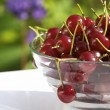 Cherry still life — Stock Photo