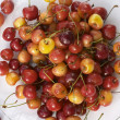 Stock Photo: Assorted cherries