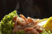 Freshly cooked prawn — Stock Photo