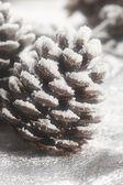 Christmas strobile — Stock Photo