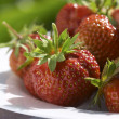 Strawberry under sun — Stock Photo