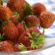 Strawberry — Stock Photo #1476013