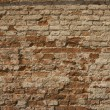 Brick wall — Foto Stock #1476316