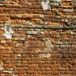 Brick wall — Stock Photo #1476451