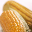 Corn — Stock Photo #1478255