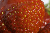 Macro shoot of strawberry — Stock Photo