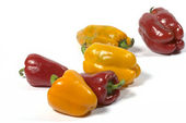 Yellow and red paprika — Stock Photo