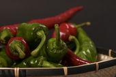 Pepper's stem — Stock Photo