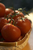 Tomato's basket — Stock Photo