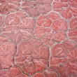 Stock Photo: Red stone paving on the street