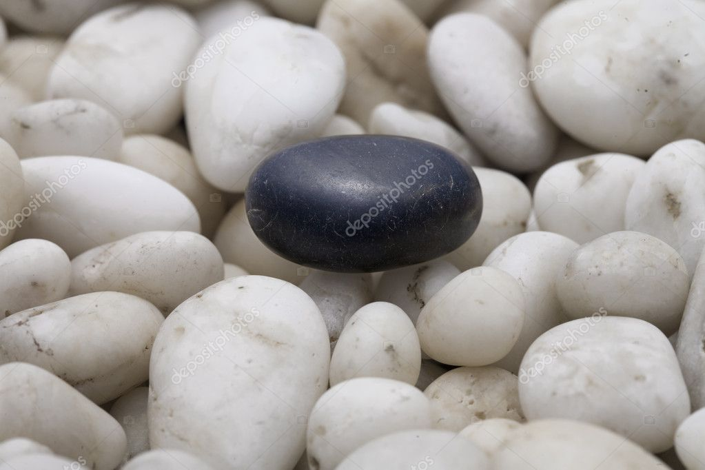 Close up of black stone on white stones  Stock Photo #1273681