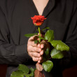 Close up of young man with rose in black shirt — Stock Photo #1409057